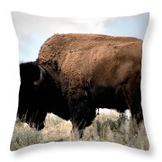 Yellowstone Bison Throw Pillow