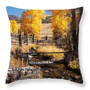 Yellowstone Institute In Lamar Valley In Yellowstone National Park Throw Pillow