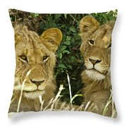 Young Brothers Throw Pillow
