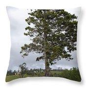 Yungabura Landscape Throw Pillow