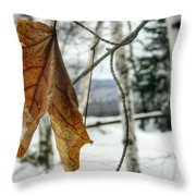The Keweenaw's Message- Will You Listen? Throw Pillow