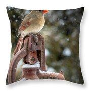 Ms Cardinal Throw Pillow