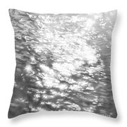 2002 Ruffled Waters  Throw Pillow
