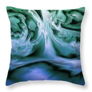 2003068 Throw Pillow