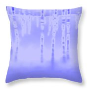 2003077 Throw Pillow