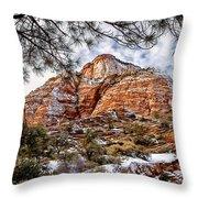 20100101-dsc05481 Throw Pillow