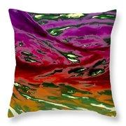 2011111906 Throw Pillow