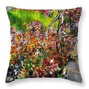 2012 119 Daisies Butterfly Garden United States Botanic Garden Washington Dc Throw Pillow