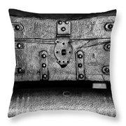 20121122_dsc00291_bw Throw Pillow