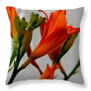2013 Day Lilies Throw Pillow