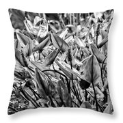 20130421-dsc1973-2 Throw Pillow