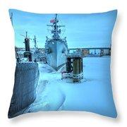 2014 Naval Park Throw Pillow