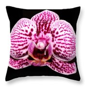 2014 Orchid Throw Pillow