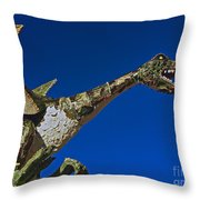 2015 Rose Parade Float Showing A Dragon 15rp039 Throw Pillow