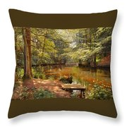 Glimpses Of The Sunby Stream Throw Pillow