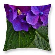 Spring 2013 Throw Pillow