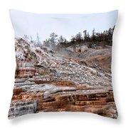 Yellowstone Throw Pillow