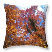 Autumn Color Throw Pillow