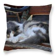 Cat In Hydra Island Throw Pillow