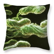 Helicobacter Pylori Throw Pillow