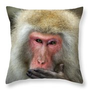 Japanese Macaque Throw Pillow