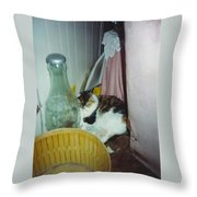 Petey Throw Pillow