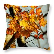 22nd Of September Throw Pillow by JAMART Photography