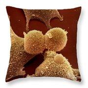 Human Fibroblast Cells Throw Pillow