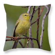 Orangecrowned Warbler Throw Pillow