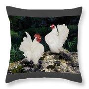 23. Pair White Serama Throw Pillow