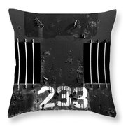 233 Throw Pillow