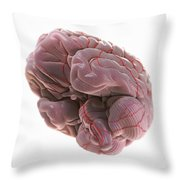 Brain With Blood Supply Throw Pillow