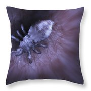 Head Louse Throw Pillow
