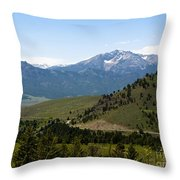 Euphorbic Marginata 5 Throw Pillow