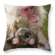 Snow Monkeys, Japan Throw Pillow
