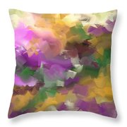 251a Throw Pillow