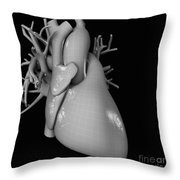 Heart Anatomy Throw Pillow