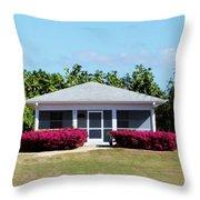 27 Cottage Throw Pillow