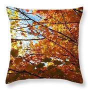 Fall Explosion Of Color Throw Pillow