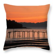 286969000-002m Throw Pillow
