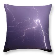 2922 Throw Pillow