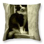 2986 Throw Pillow