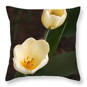 2whites Throw Pillow