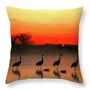 A General View Of The National Park Throw Pillow