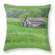 Abandonment Throw Pillow