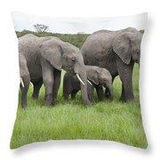 African Elephants Grazing  Kenya Throw Pillow