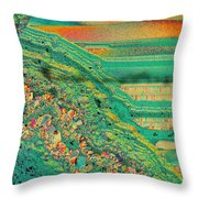 Agate Microworlds 2 Throw Pillow