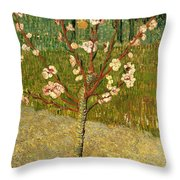 Almond Tree In Blossom Throw Pillow