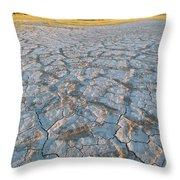 Alvord Desert, Oregon Throw Pillow