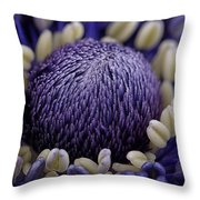 Anemone Throw Pillow by Mark Johnson